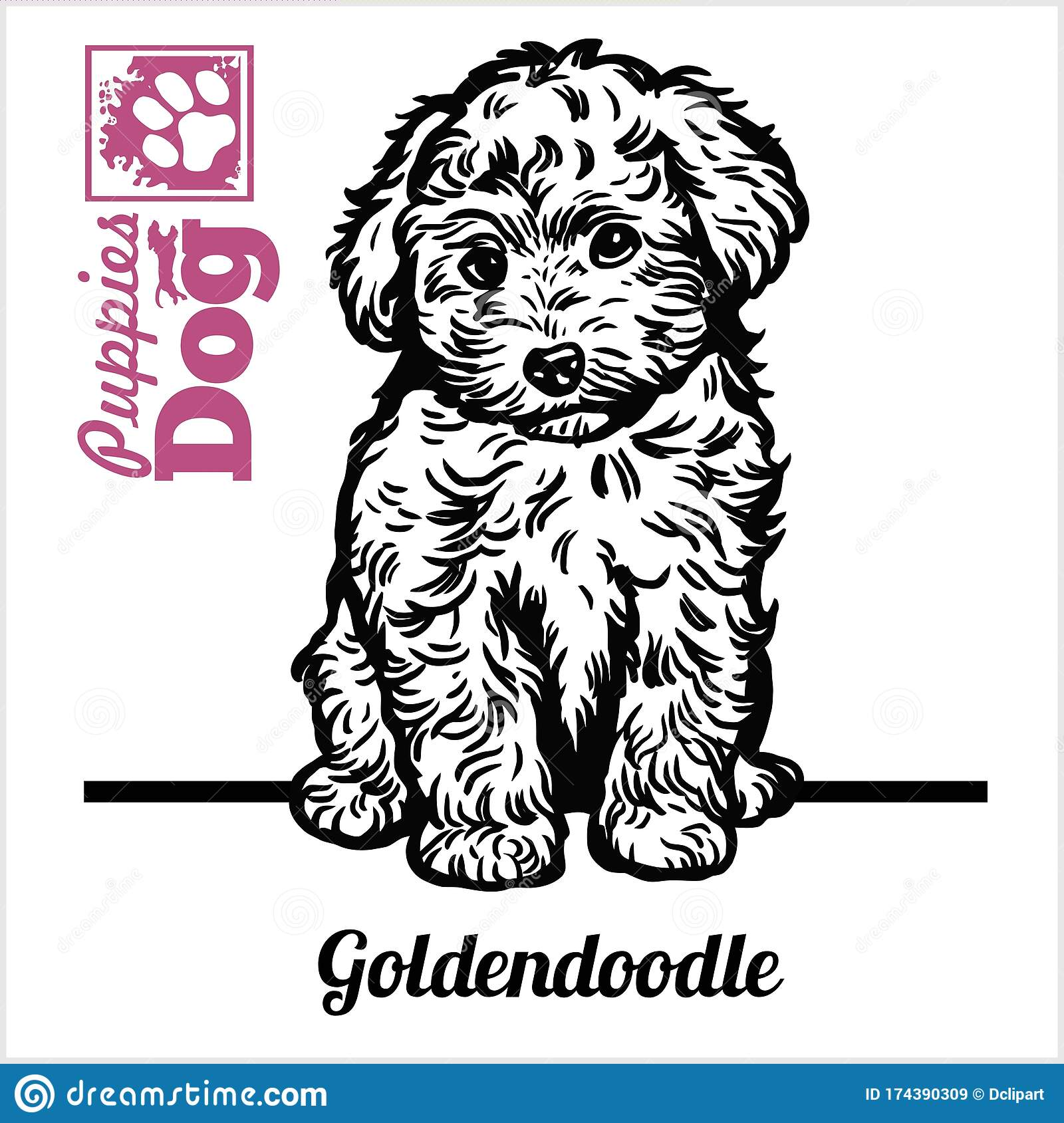 Goldendoodle Puppy Sitting Drawing By Hand Sketch Engraving Style Black And White Vector Image Stock Vector Illustration Of Puppy Drawing 174390309