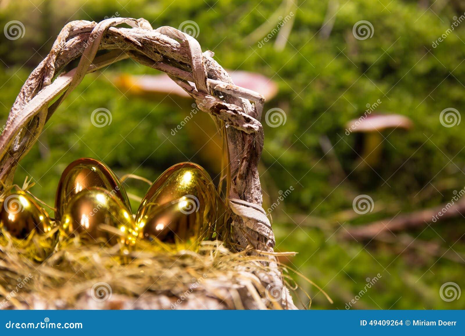 Download Goldene Ostereier In Einem Nest Stockfoto - Bild von eier, frech: 49409264