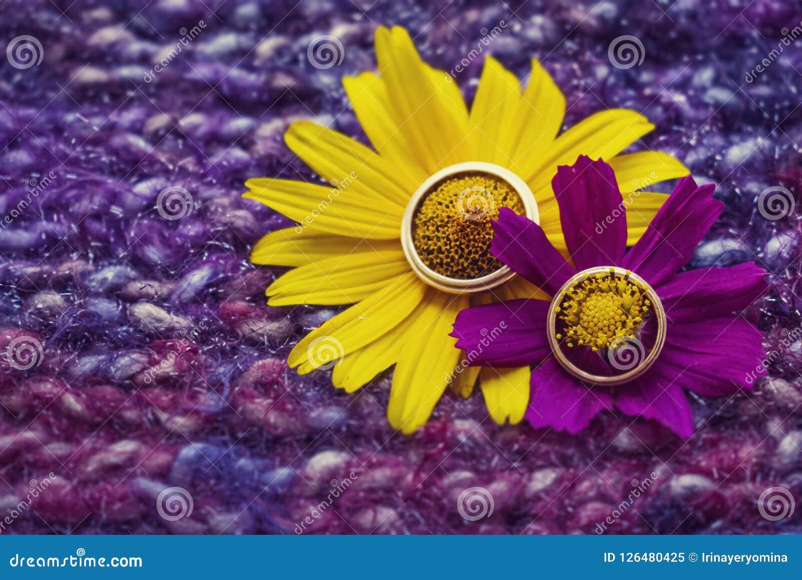 Goldene Ringe der schönen Hochzeit auf einer gelben und purpurroten Blume an