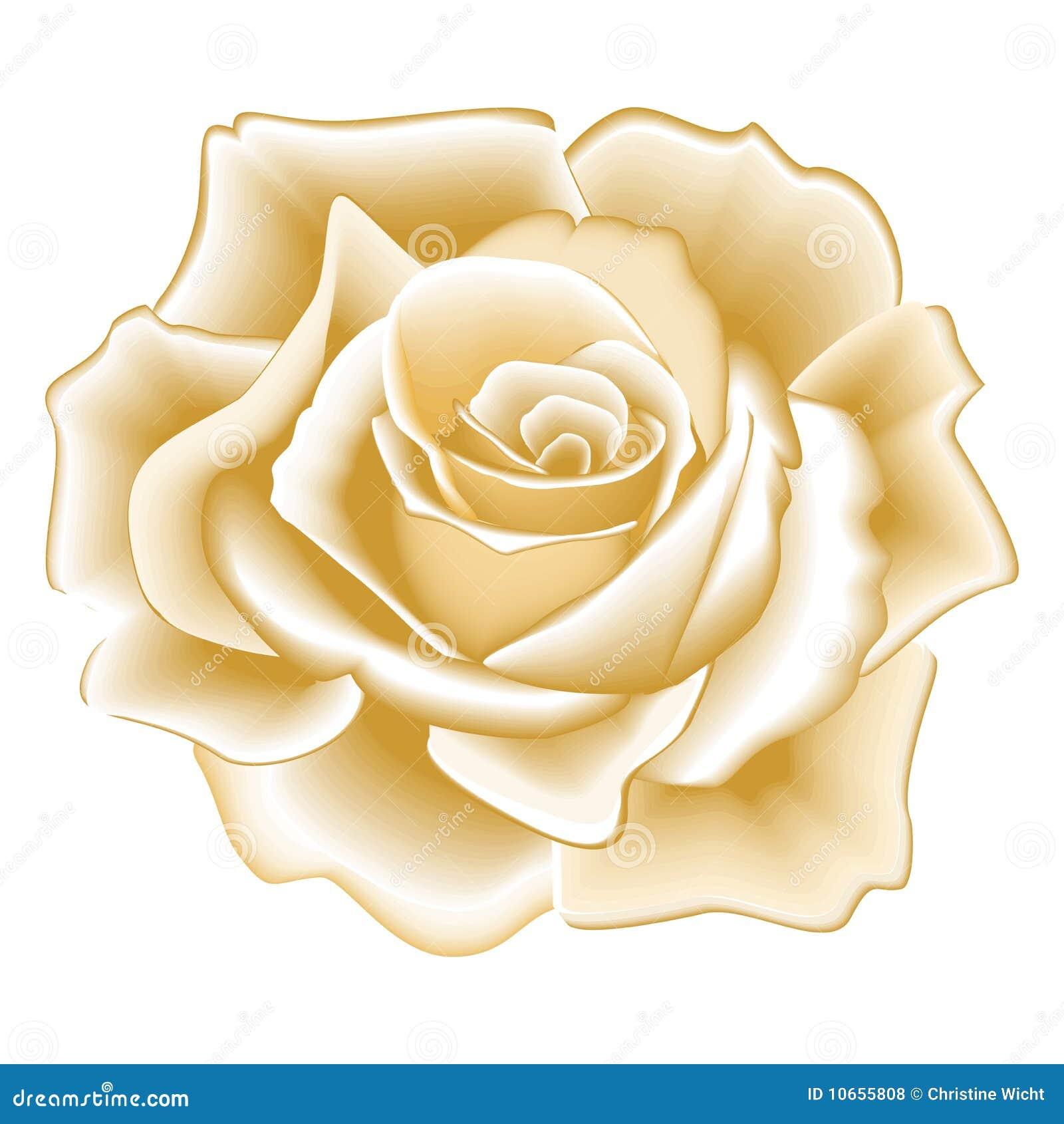 goldene rose lizenzfreie stockfotos bild 10655808. Black Bedroom Furniture Sets. Home Design Ideas
