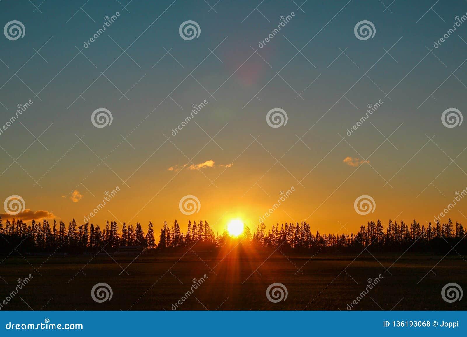 Goldener Sonnenuntergang in Neuseeland