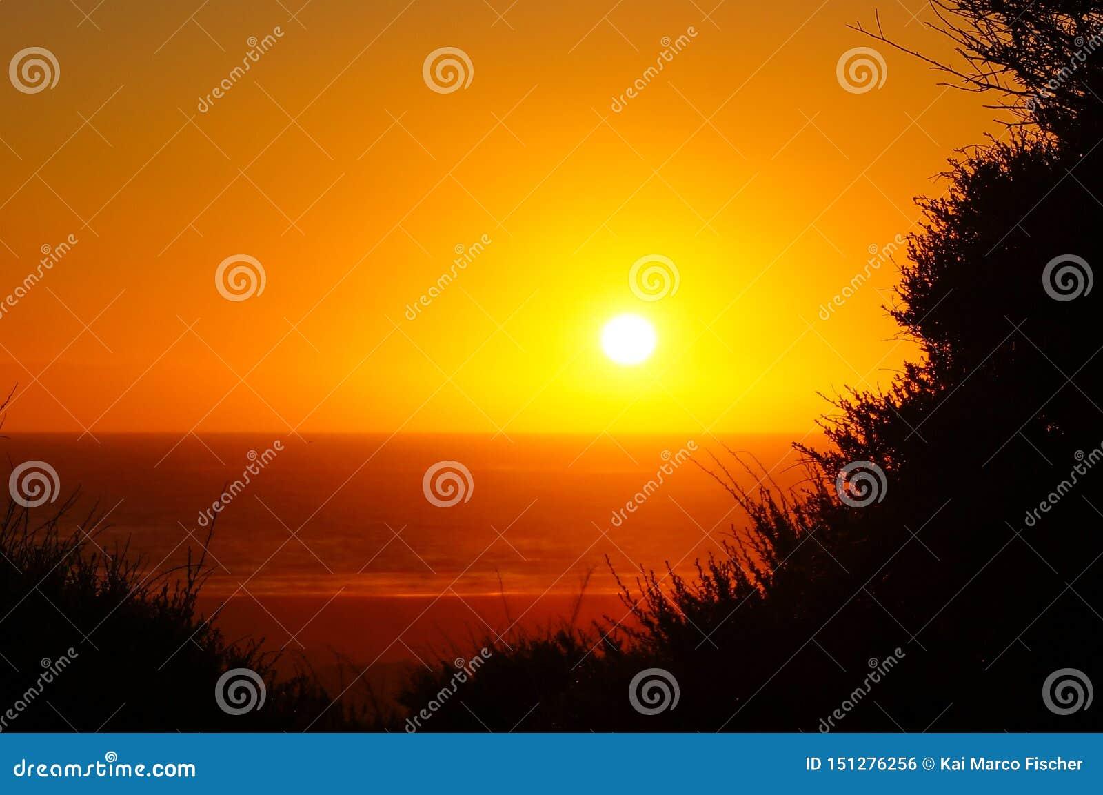 Goldener Stunden-Sonnenuntergang bei Piha Strand/Neuseeland