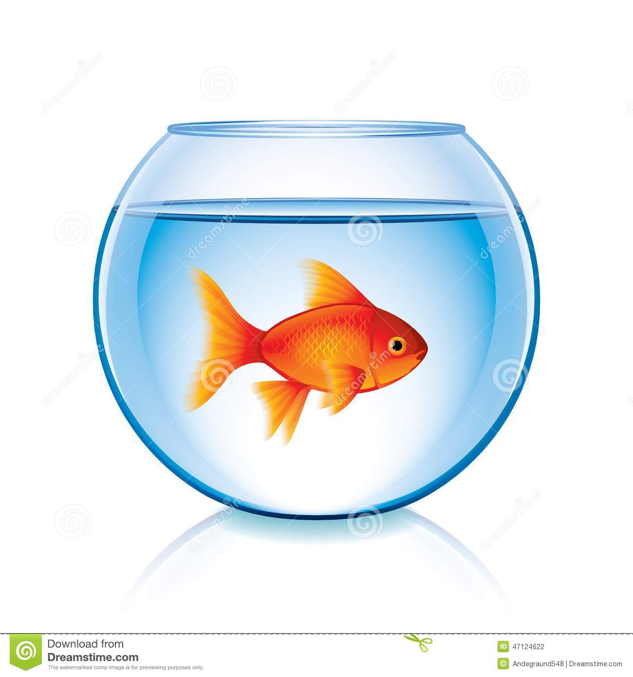 Goldfish in a bowl - photo#24