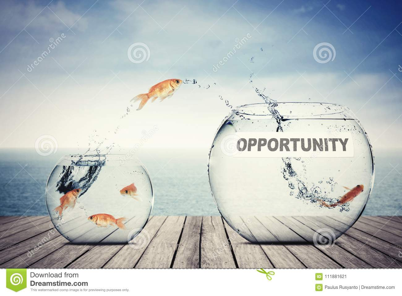 Goldfish jumping out to aquarium with opportunity text