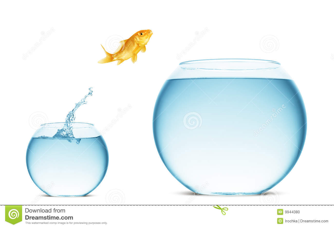 goldfish jumping out of the water stock photo image 9944380 fishbowl clipart black and white fishbowl clip art images