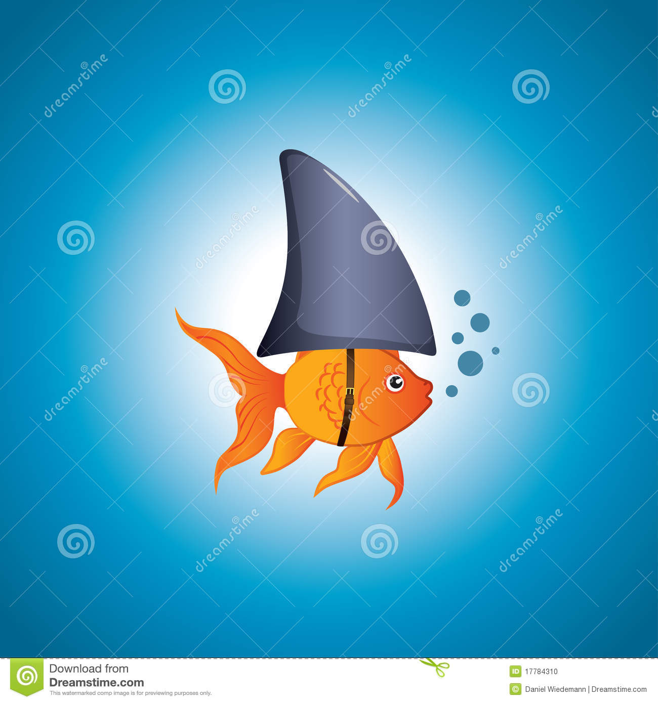 shark and the goldfish Rainbow sharks are more closely related to goldfish than to true sharks still, they are handsome fish who superficially resemble their toothy saltwater namesakes.