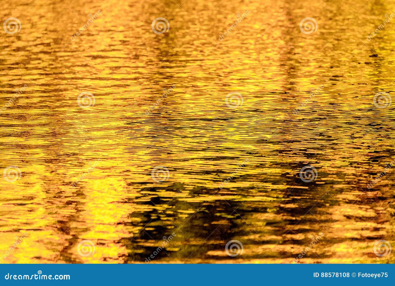 Goldherbst-Seereflexionen