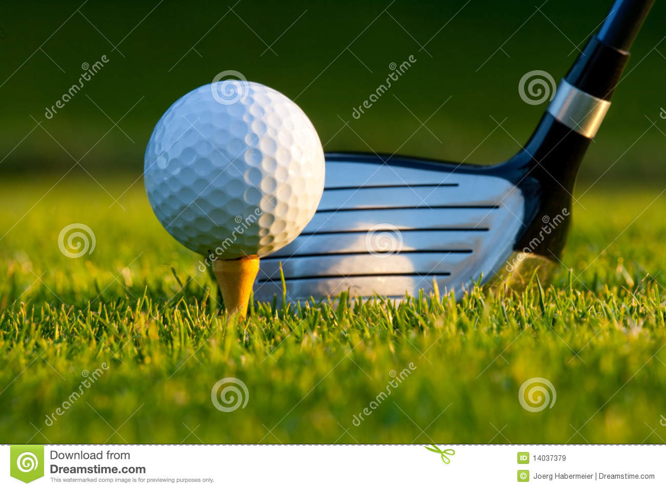 Golf ball and driver on golf course