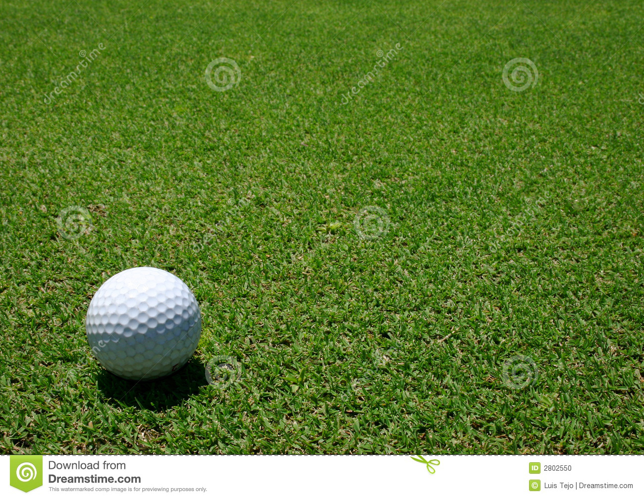 Golf ball in the green