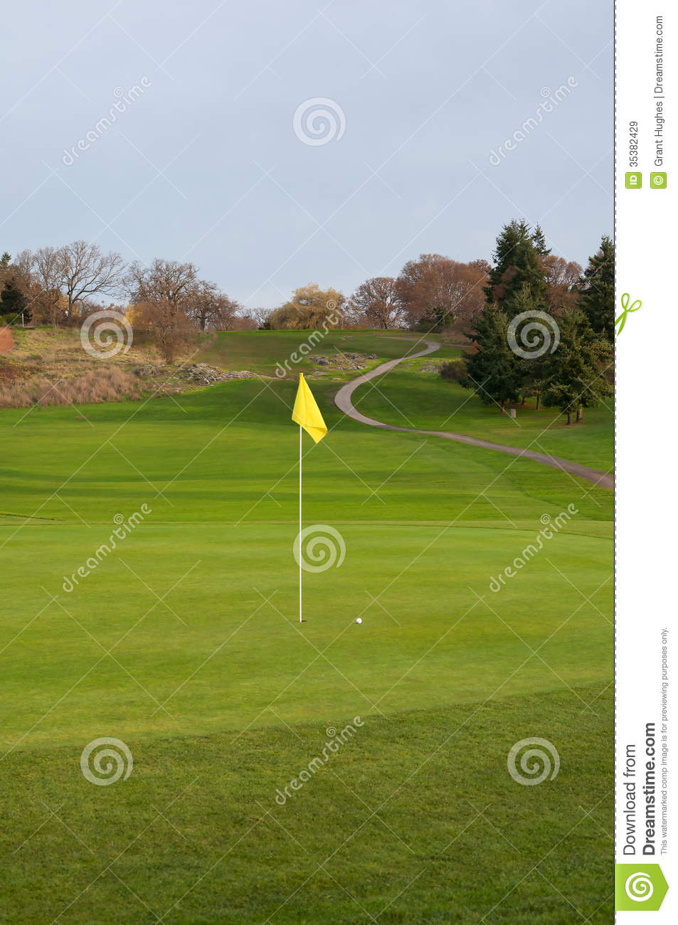Golf Ball On Green Fairway Cart Path And Elevated Tee