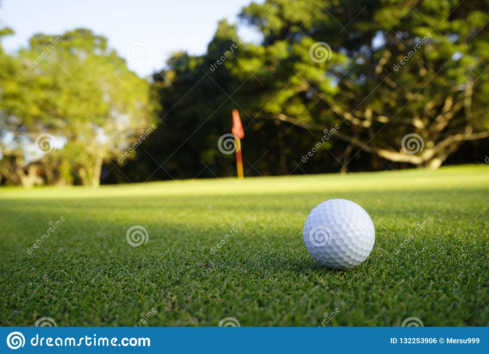 Golf ball on green in beautiful golf course at sunset background