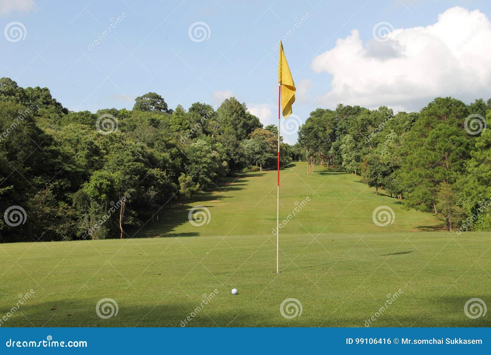 Golf balls in golf course
