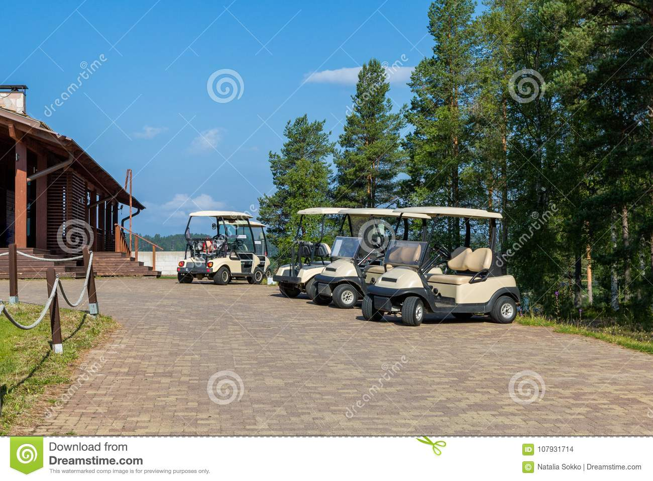Golf carts on the parking
