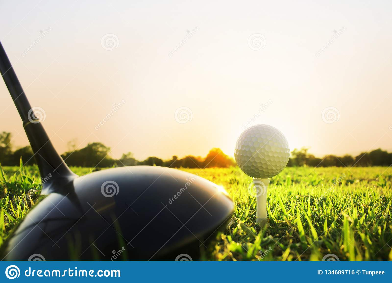 Golf club and golf ball on green grass ready to play.