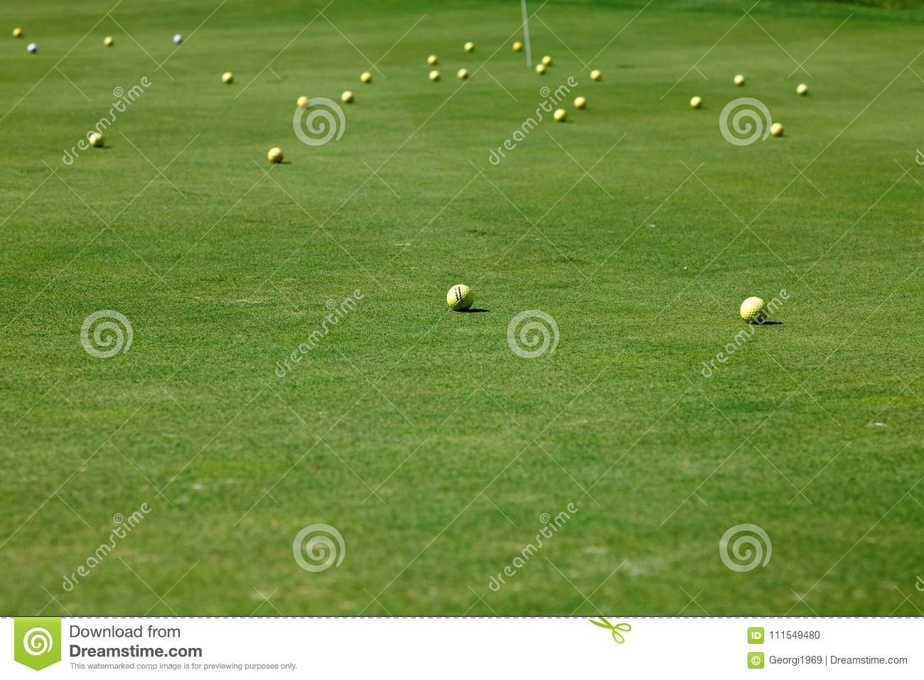 Golf course with balls