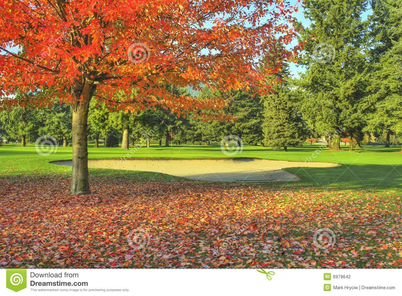 Golf Course Fall Autumn Stock Photography - Image: 6979642