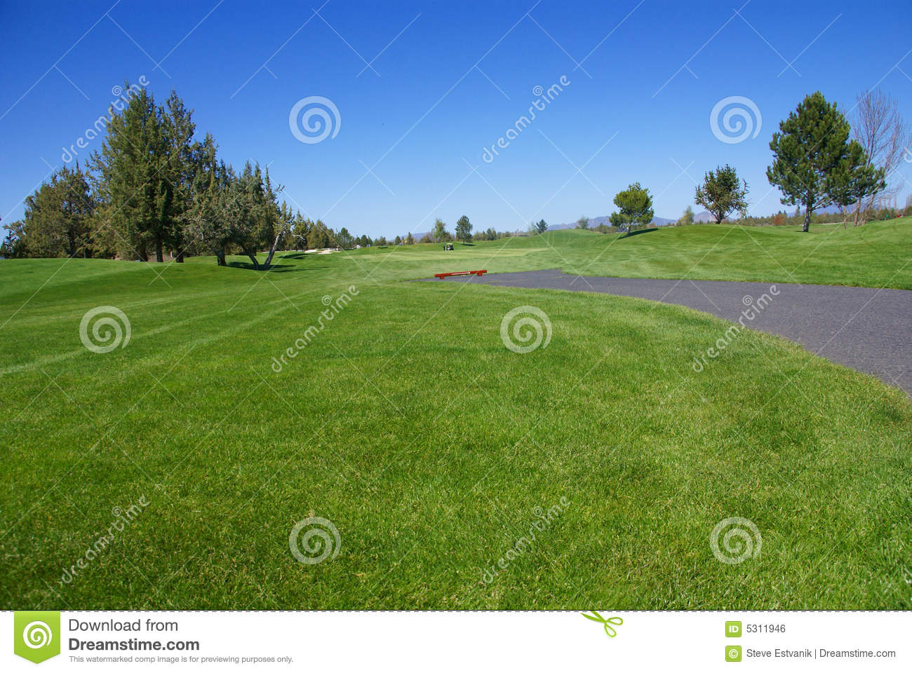 Golf Course Green Fairway Royalty Free Stock Image