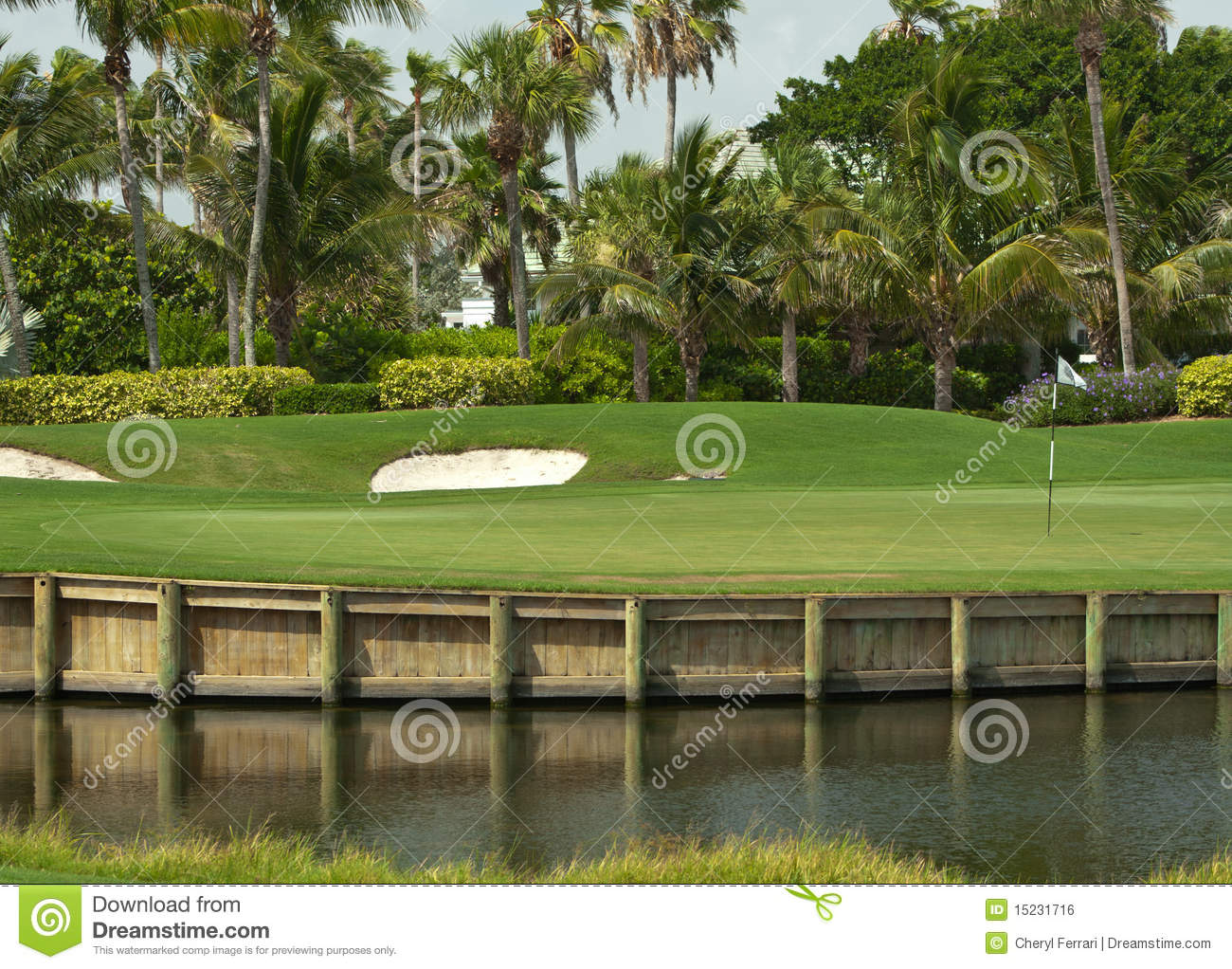 Download Golf Course Green In Florida 2 Stock Photo - Image of beautiful, exclusive: 15231716