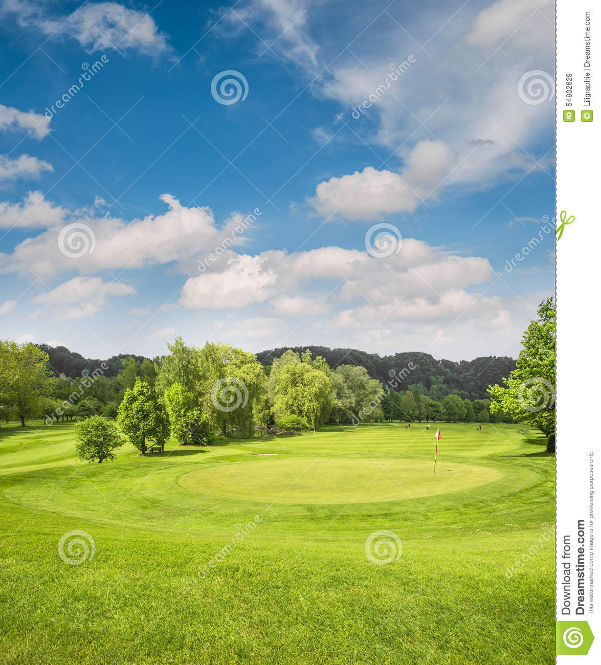 Golf Course Landscape. Field With Green Grass, Trees, Blue ...
