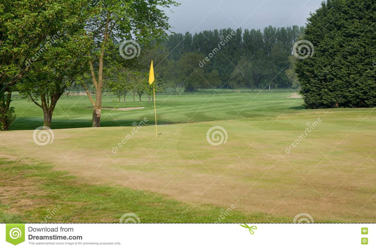 Golf Green And Fairway Stock Photo Image 19326040