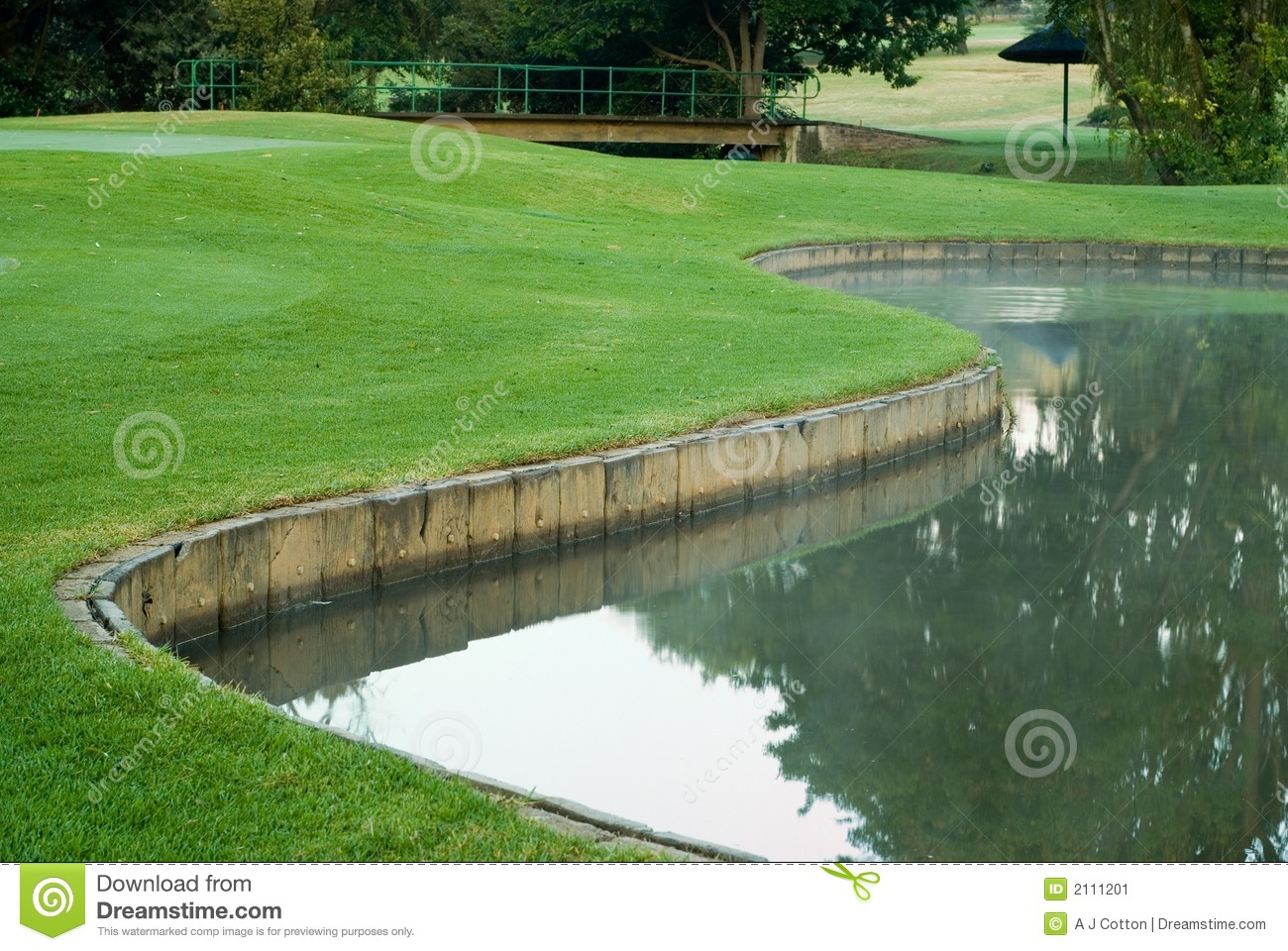 golf green and water hazard stock image