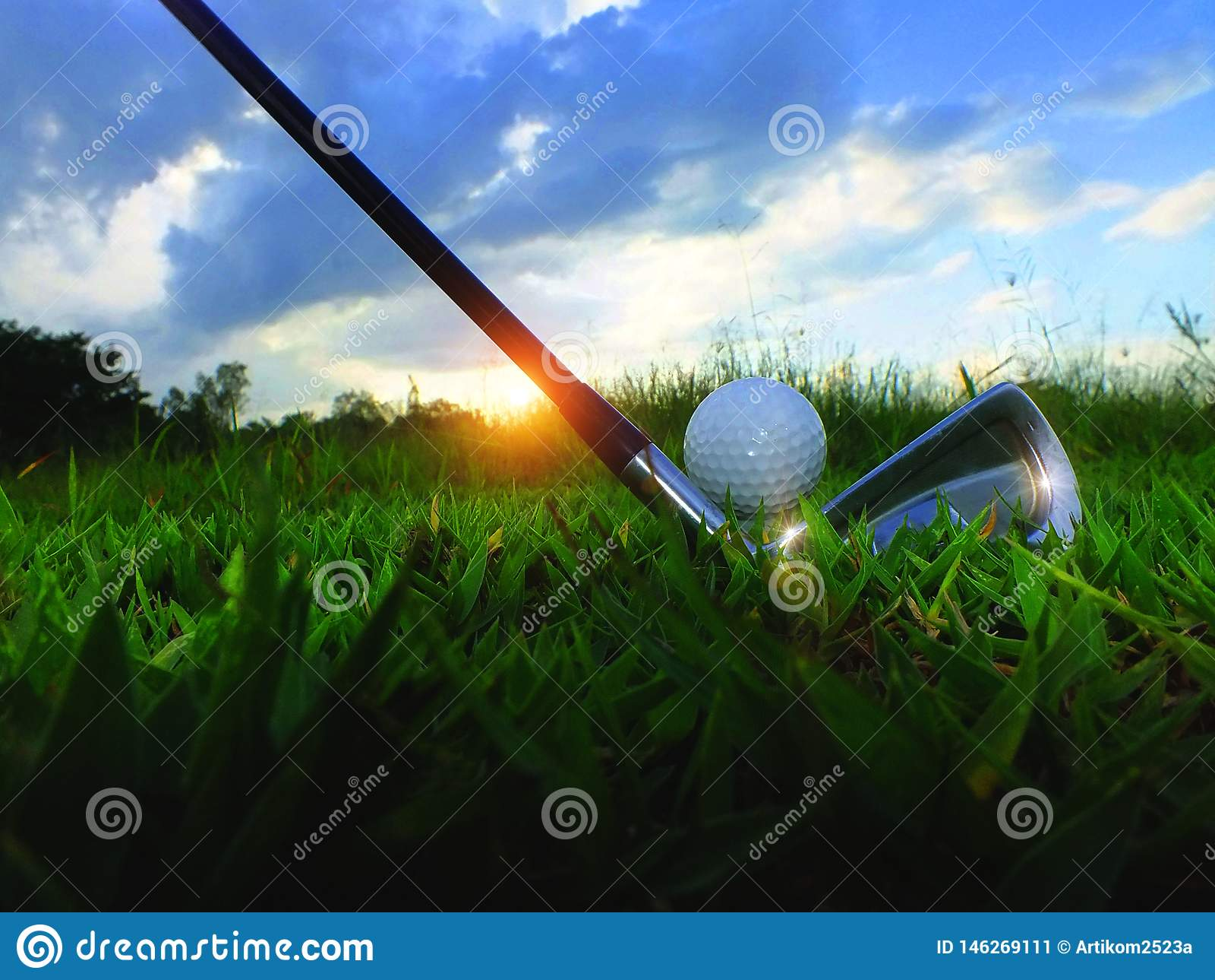 Golf och järn Slå golfbanan i den gröna gräsmattan Closeupgolfbollar i den gröna gräsmattan försiktigt, när du exponeras till sol