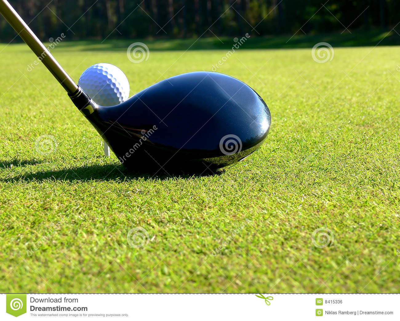 Golf Tee Off Stock Photo Image Of Birdie Hole