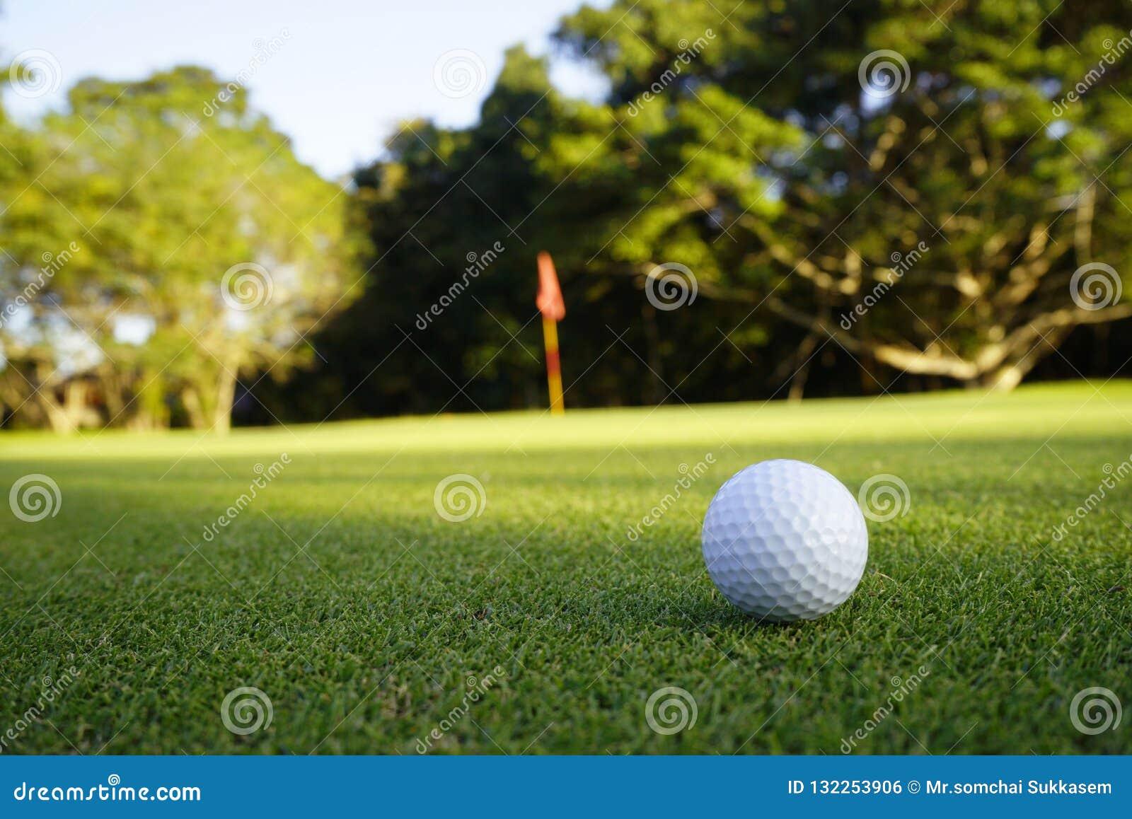 Golfball auf Grün im schönen Golfplatz am Sonnenunterganghintergrund