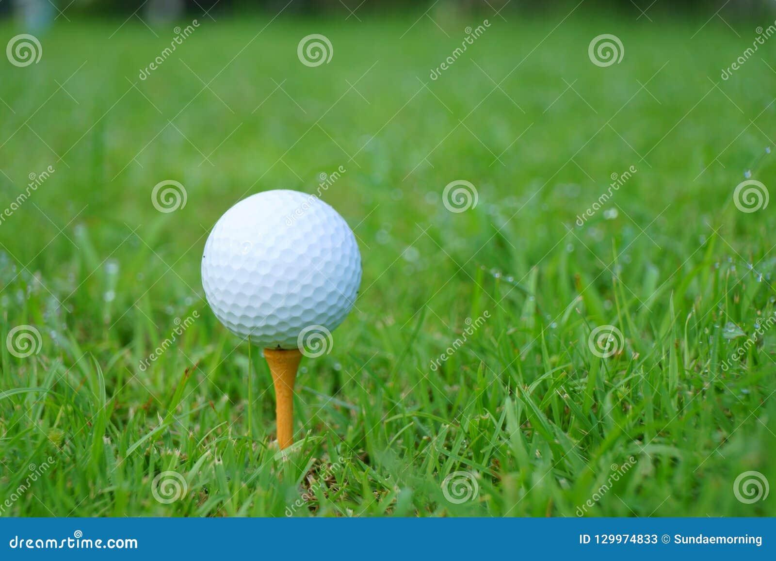 Golfboll och utslagsplats på grön kursbakgrund för golf