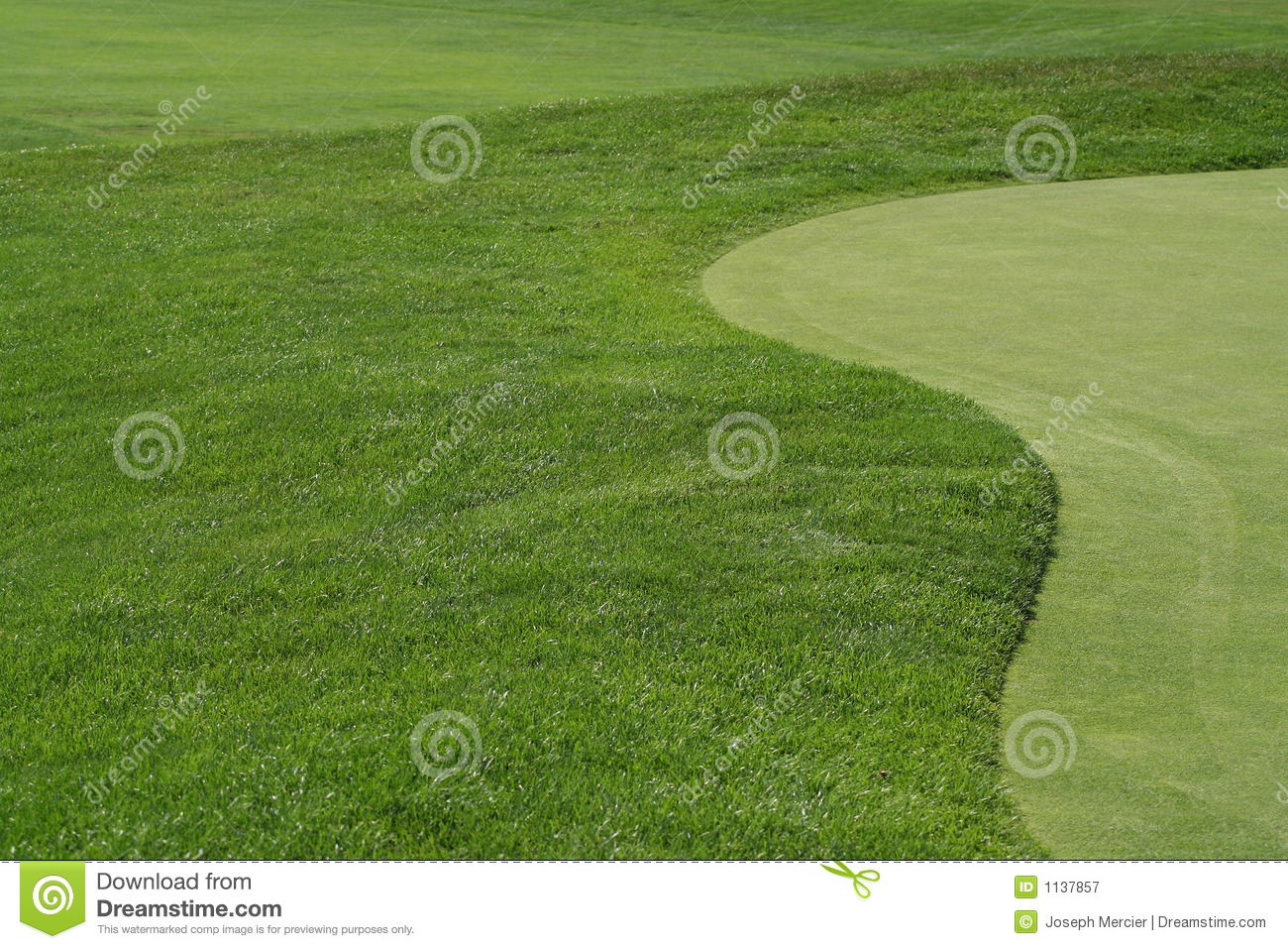 Golfcourse Fairway And Green Royalty Free Stock
