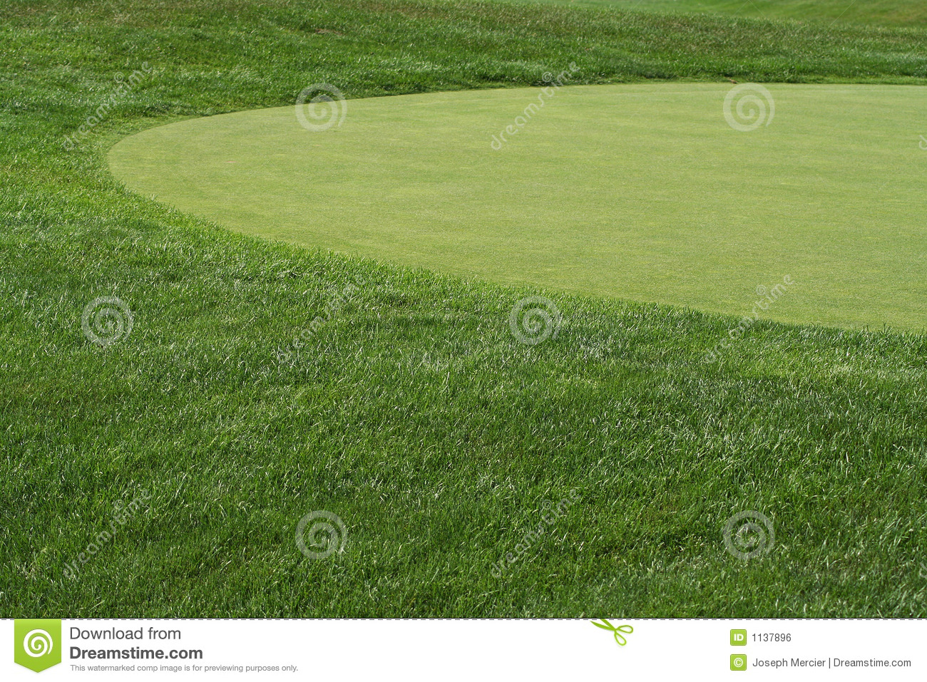 Golfcourse Fairway And Green Royalty Free Stock Image ...