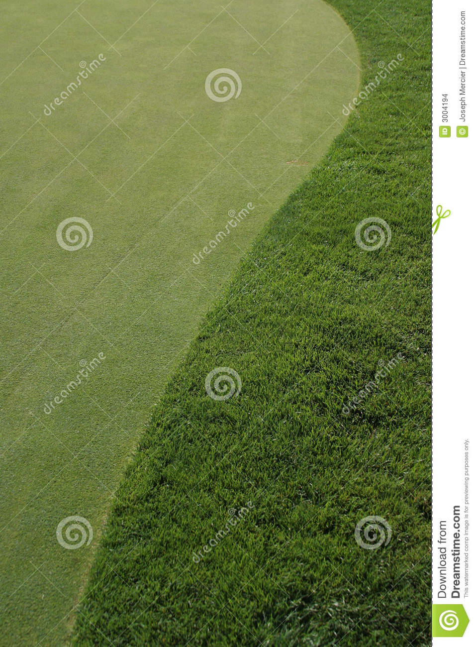 Golfcourse Green And Fairway Stock Images Image 3004194