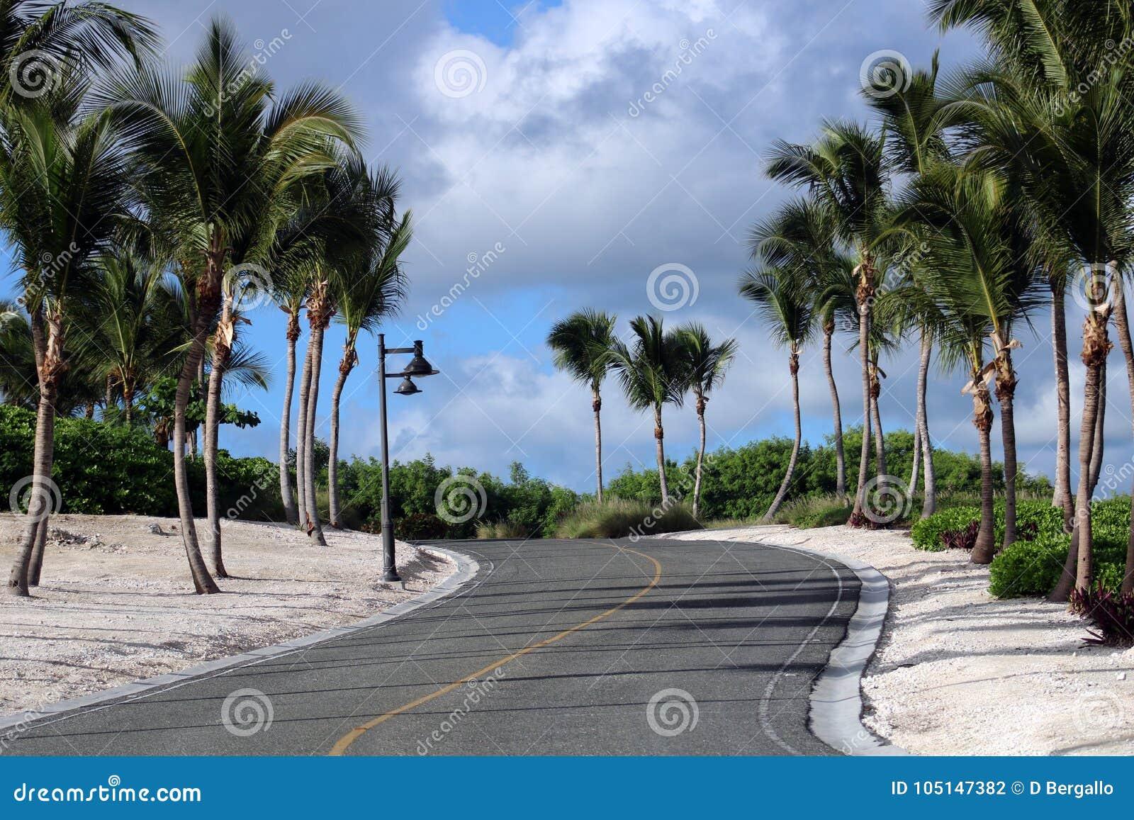 Golfcursus bij Caraïbisch eiland met oceaan in de rug