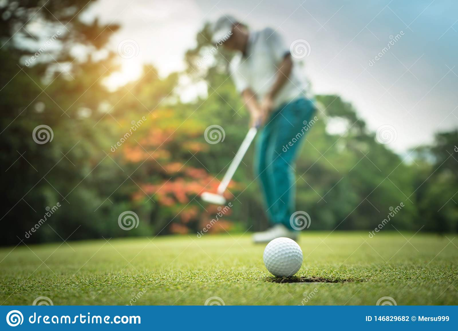 Golfer action to win after long putting golf ball on the green golf