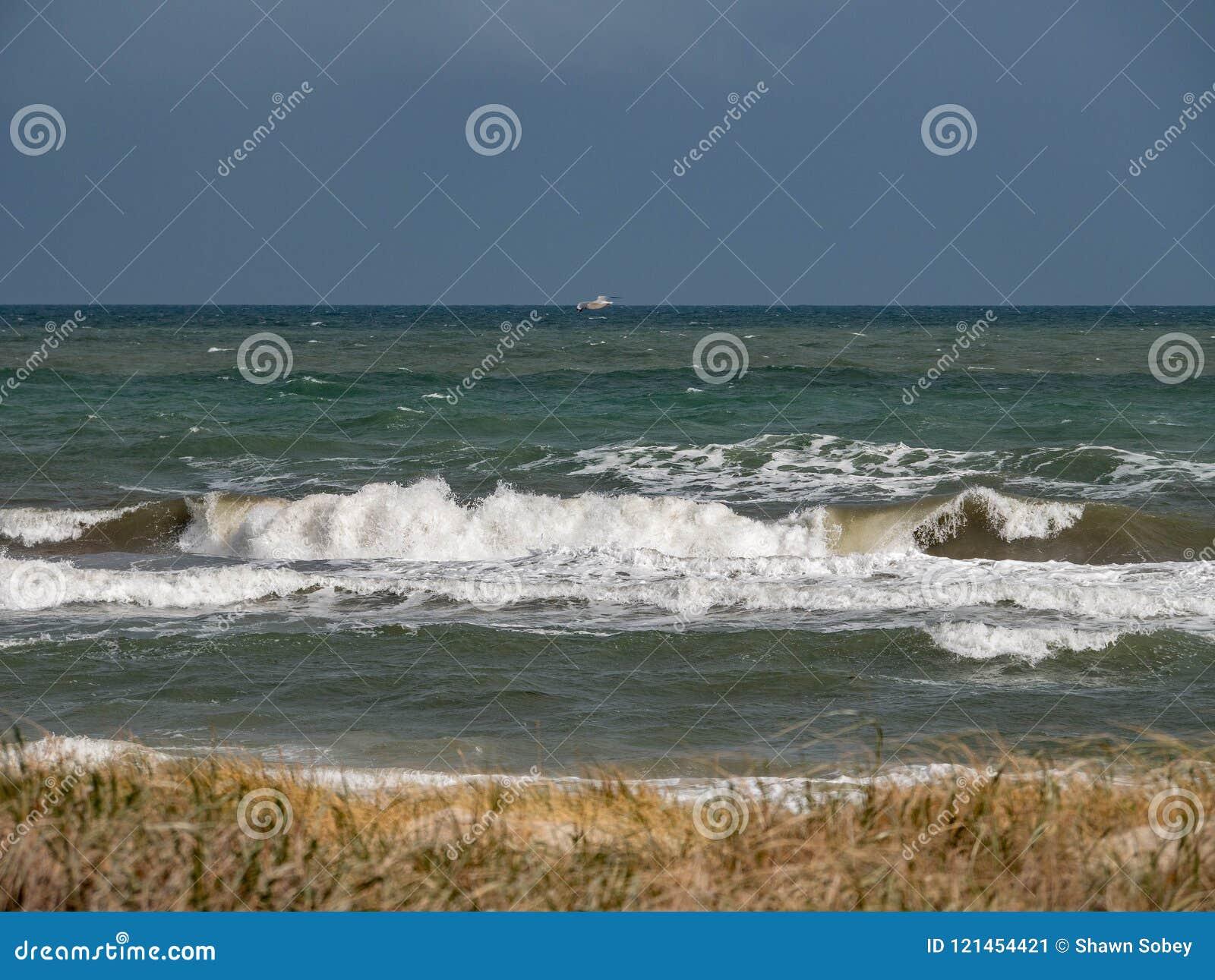 Golven die bij het strand breken