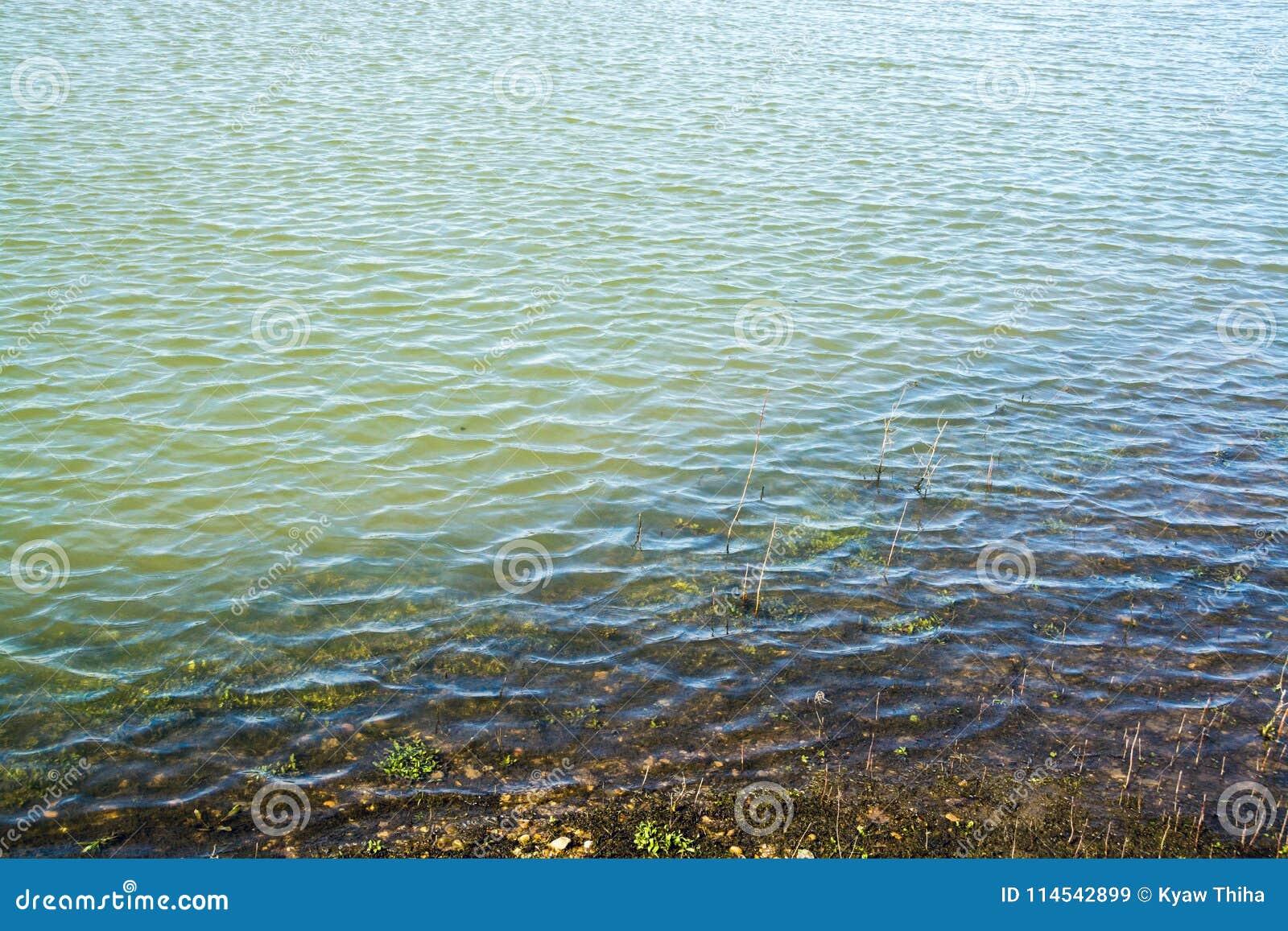 Golven door de wind op ondiep water worden gevormd - 2 die