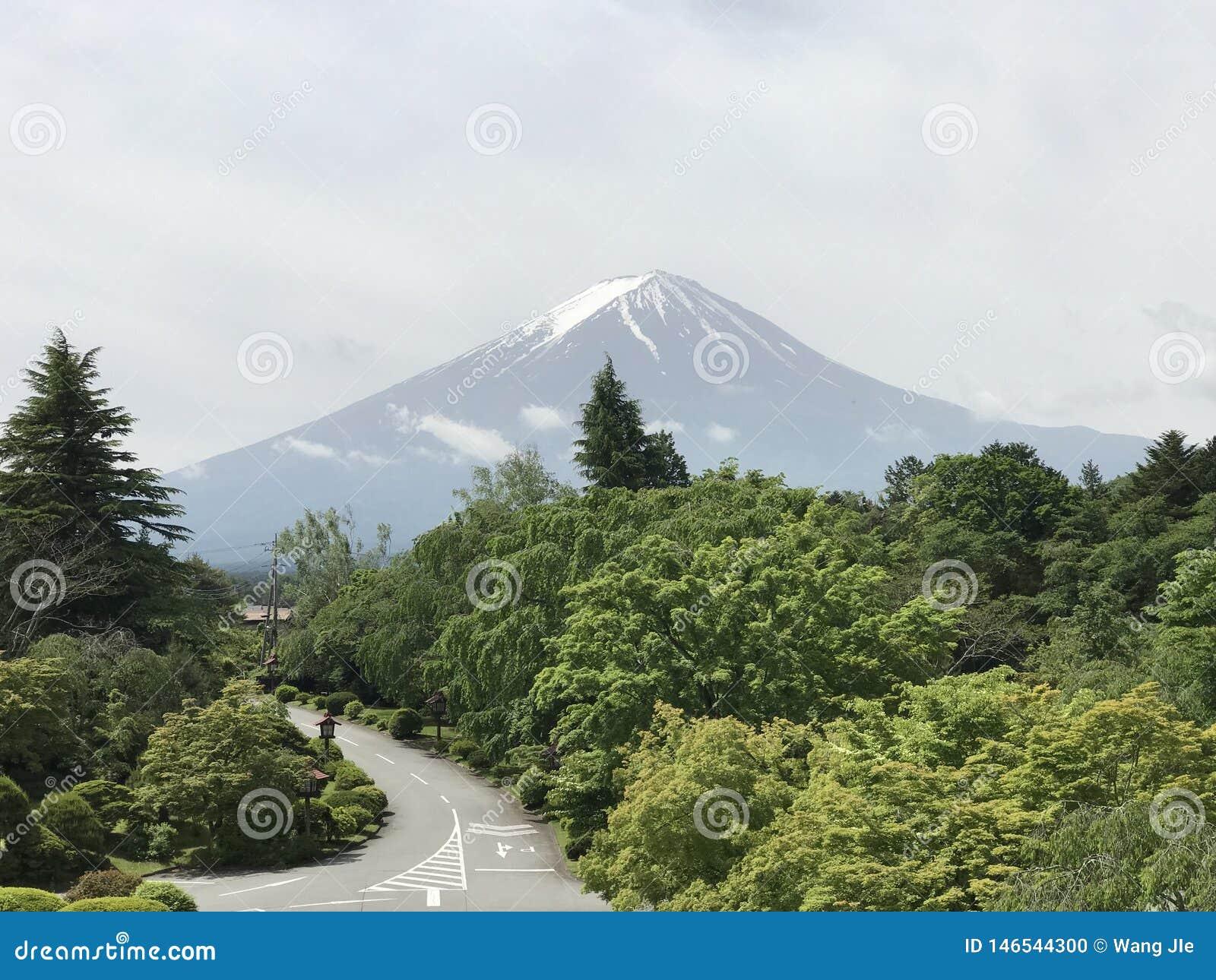 Good Fuji Morning