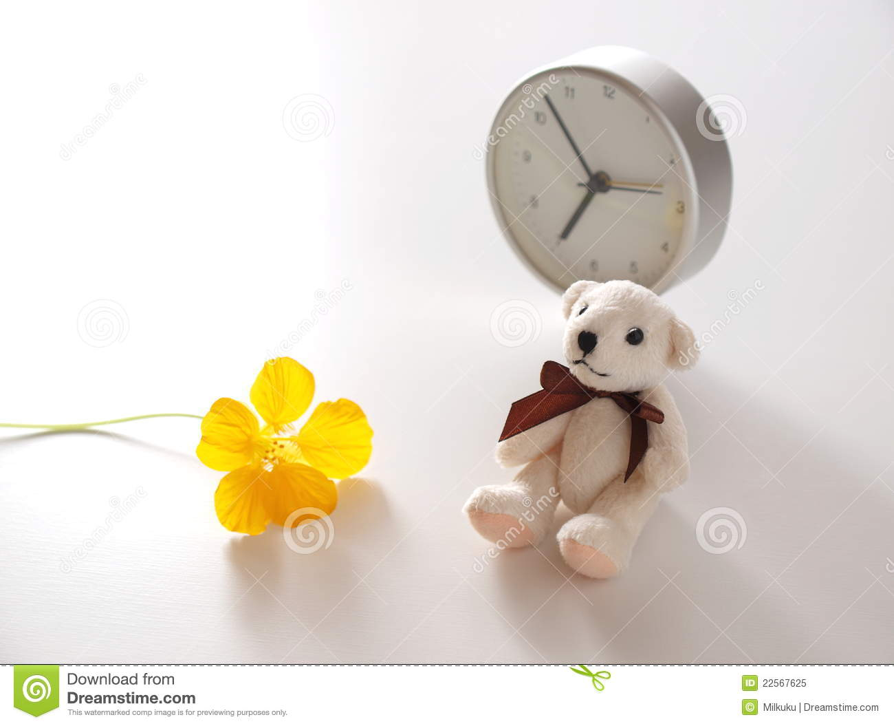 Good Morning Teddy Stock Image Image Of Gift Innocence 22567625