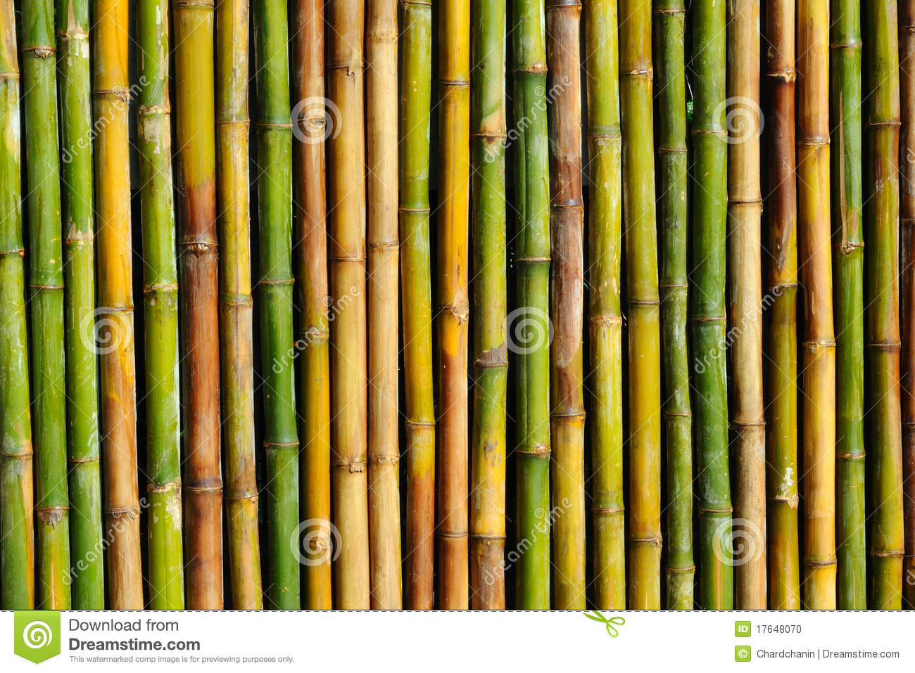 Good Quality Natural Bamboo Texture Stock Photo Image