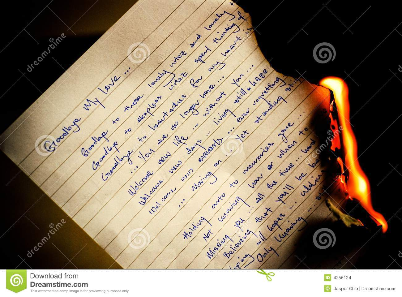 Goodbye letter burning stock photo Image of bygone gone 4256124