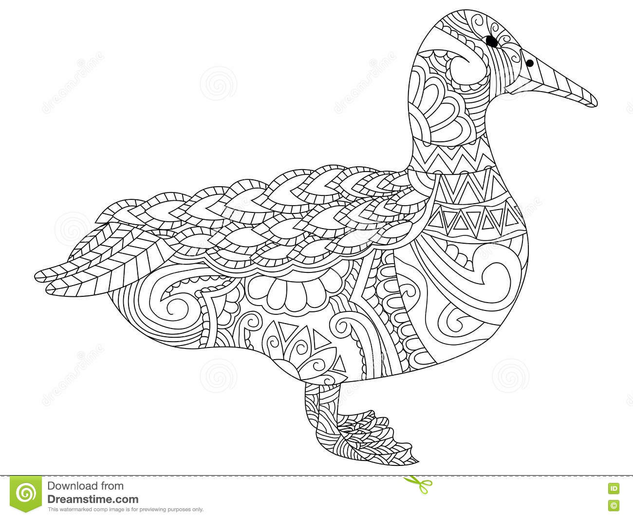 Drawing Zentangle Swan For Coloring Page Vector Illustration ...