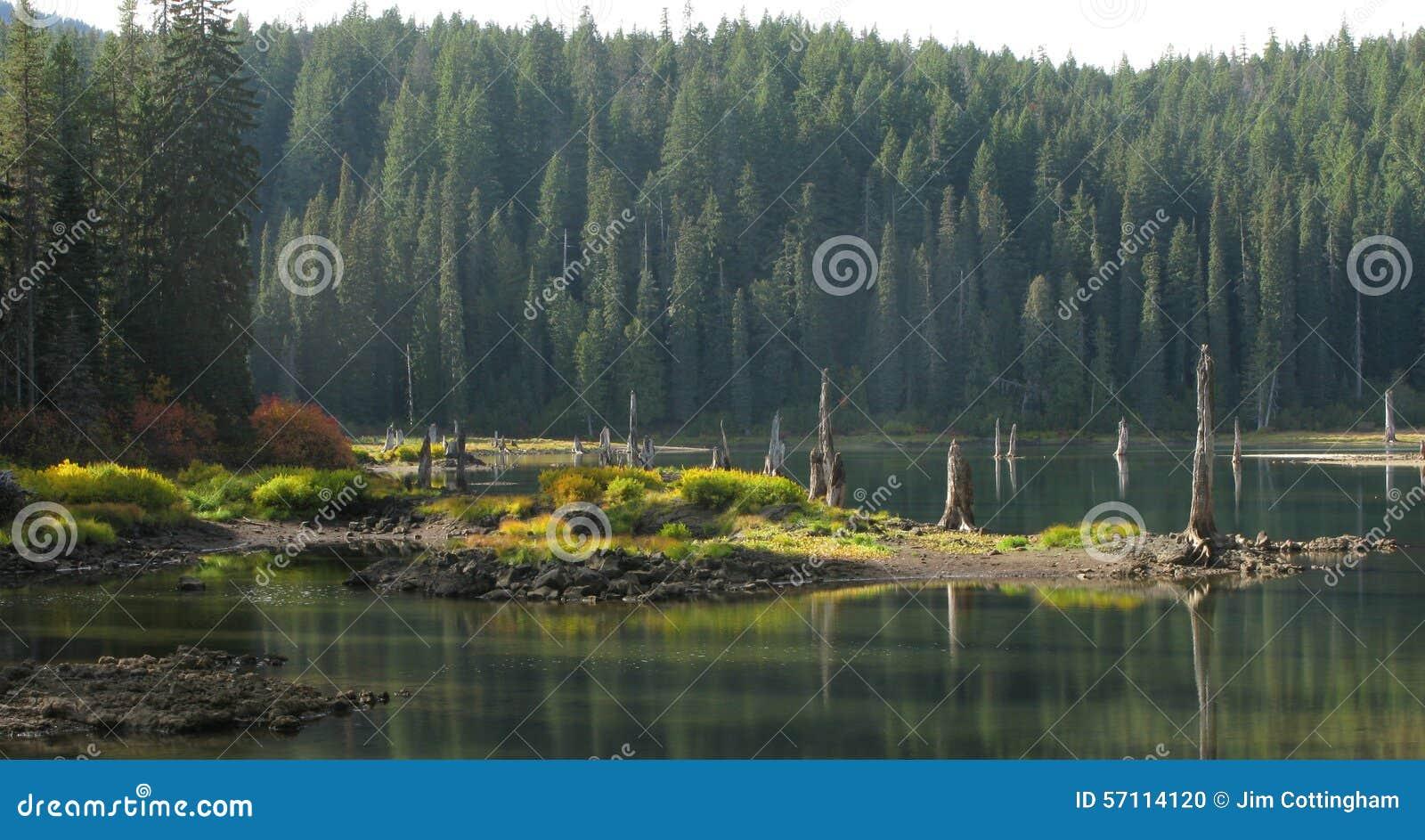 Goose Lake Wa Goose Lake - Wa - Giff...