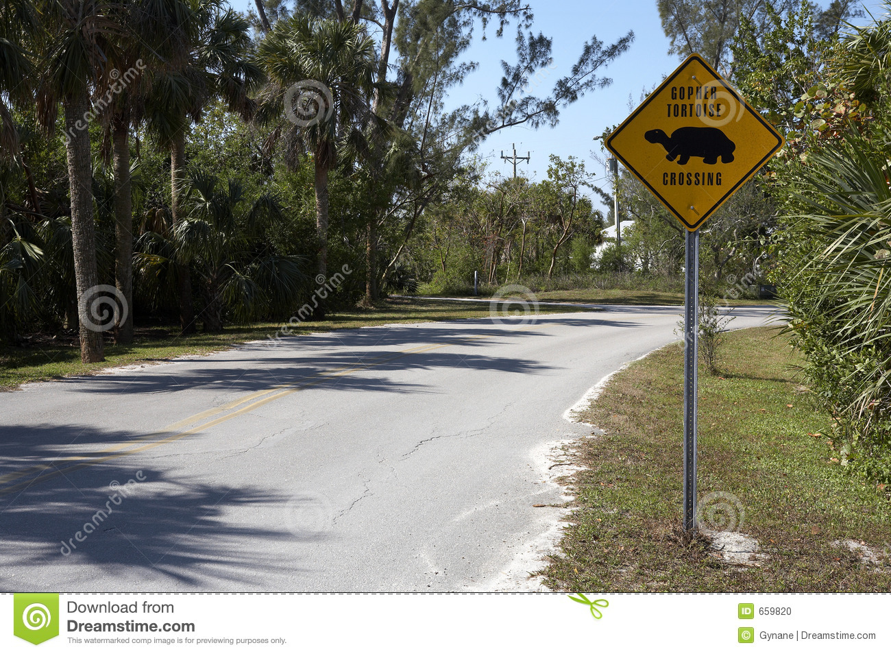Gopher Tortoise Sign On Dunlop Road Stock Photo - Image of