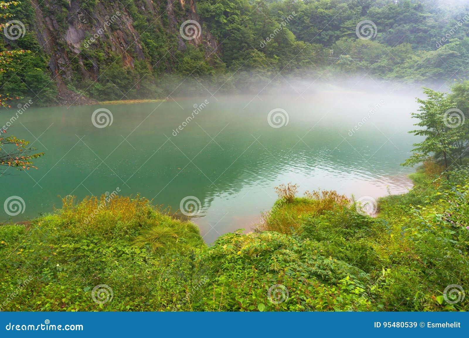 Gorącej wiosny jezioro w lesie