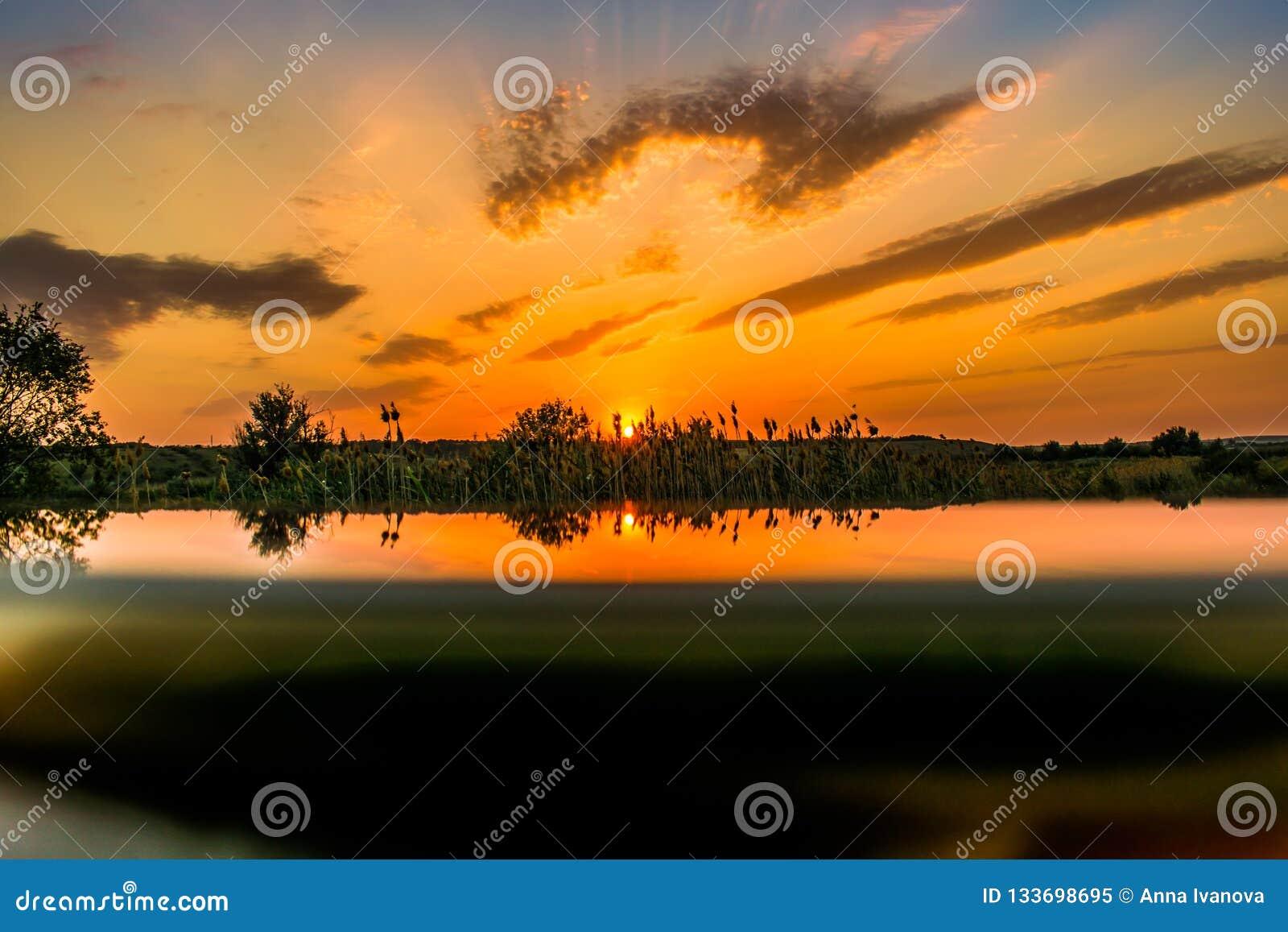 Gorący i ciepli kolory i cienie piękni krajobrazy Rosja w Rostov regionie Lokalni pola kwitnący żółci słoneczniki,