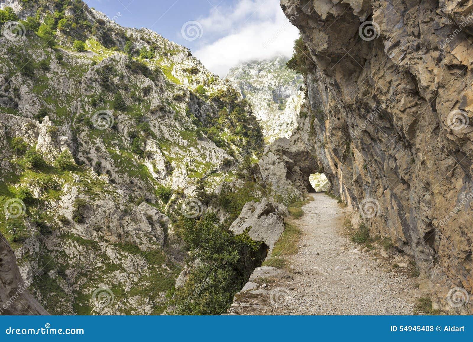 Gorge of River Cares in Asturias