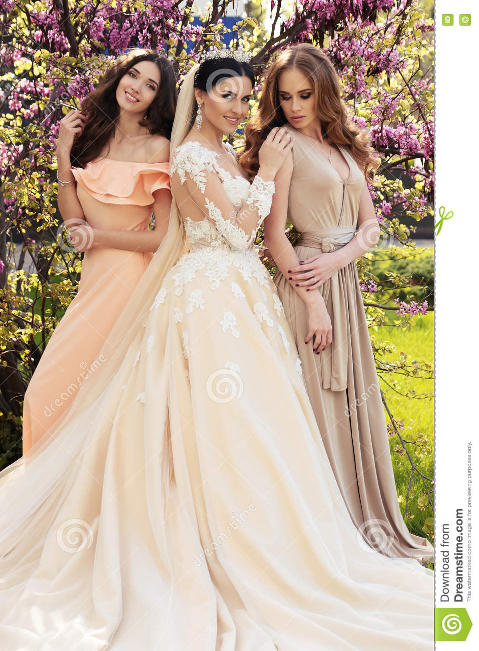 Gorgeous Bride In Luxurious Wedding Dress, Posing With Beautiful ...