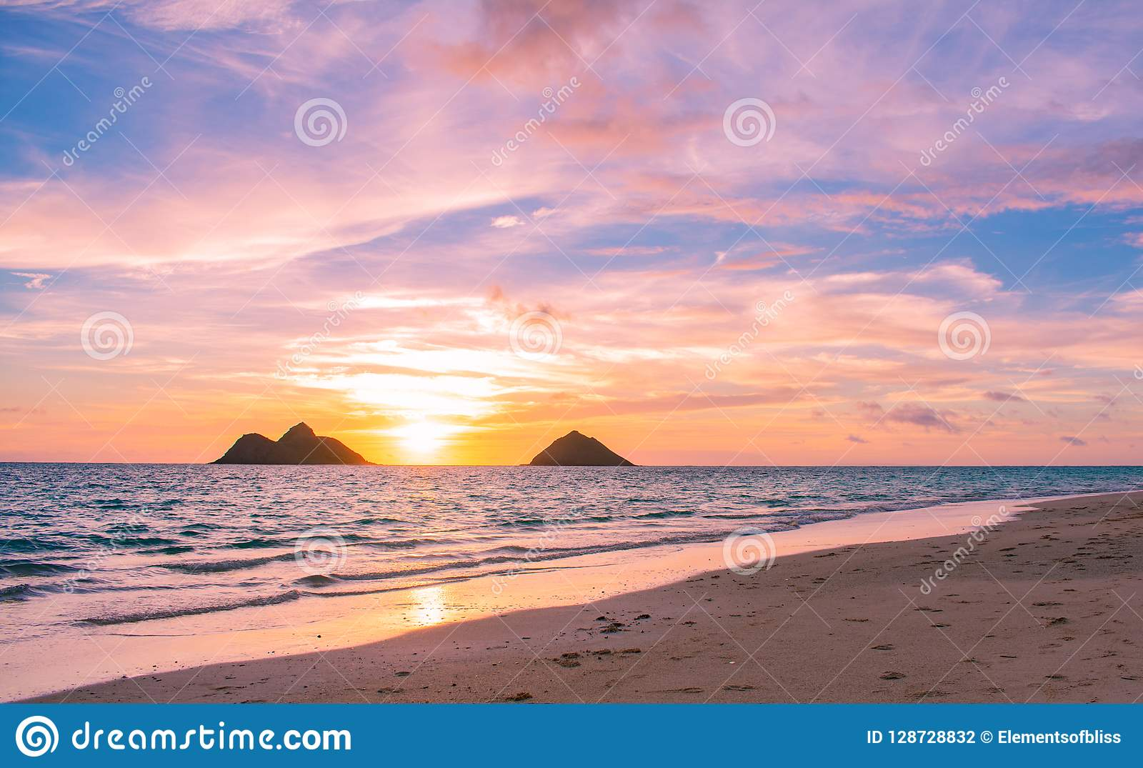 Gorgeous Lanikai Beach Sunrise Stock Photo Image Of Tree