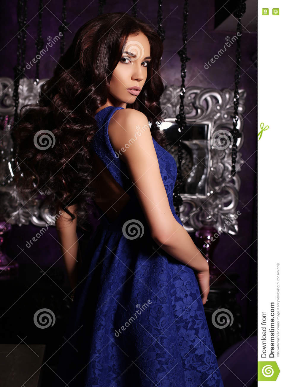 f4be3fd2b75 Fashion interior photo of gorgeous woman with long dark hair in luxurious  dress with accessories