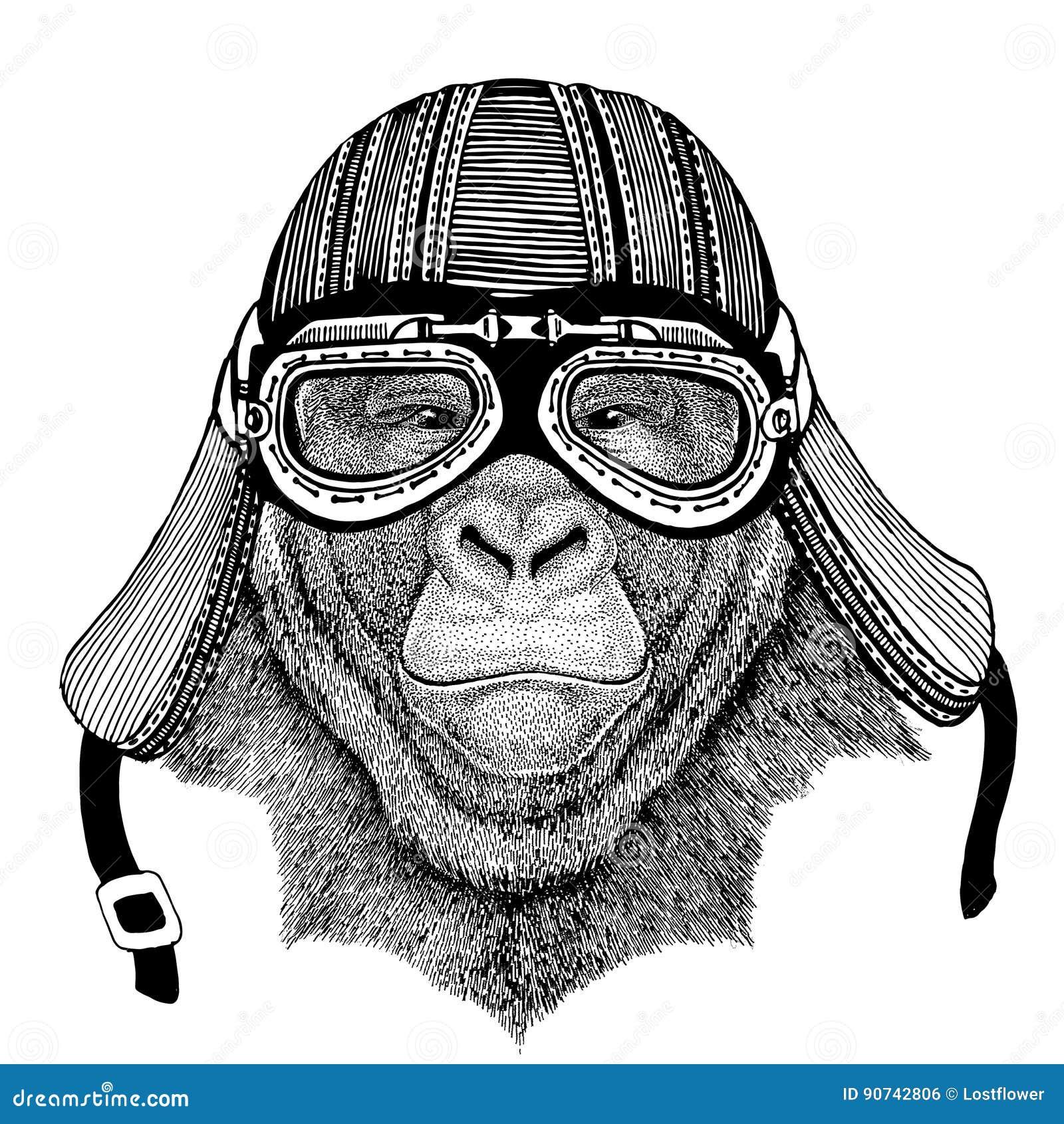 Gorilla in the building helmet ~ Illustrations ~ Creative ...